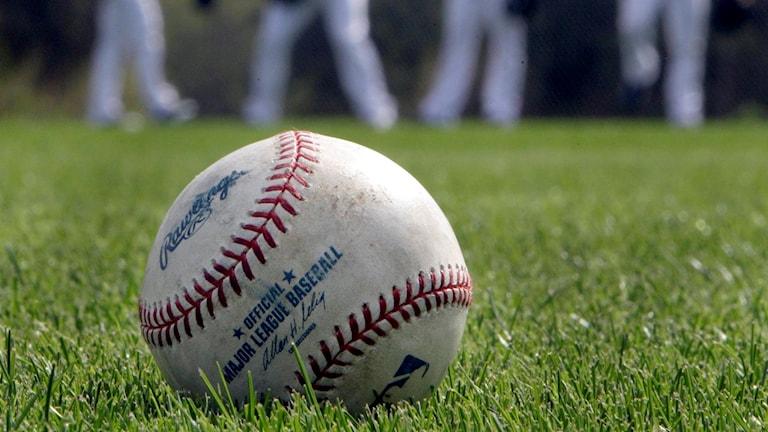 En baseball ligger på gräs.