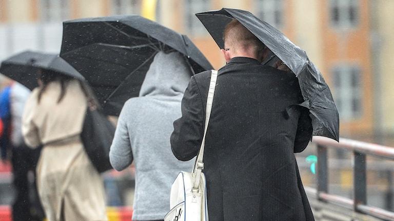 Tre personer går med paraply när det blåser.