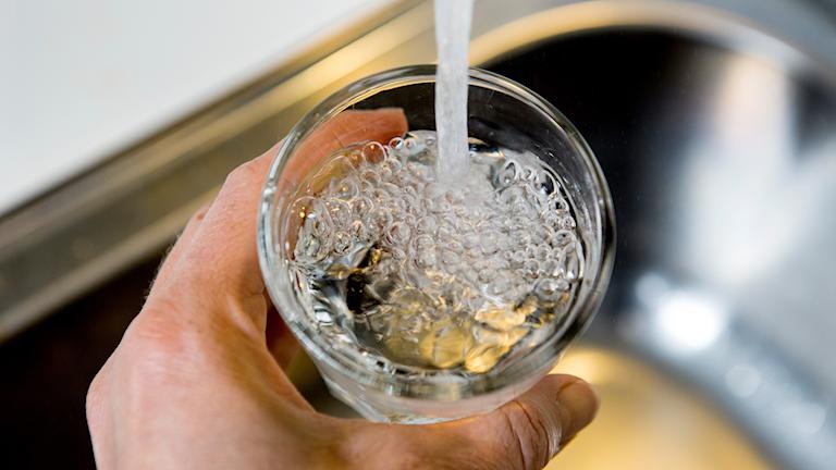 Vatten som hälls från en kran i ett glas.