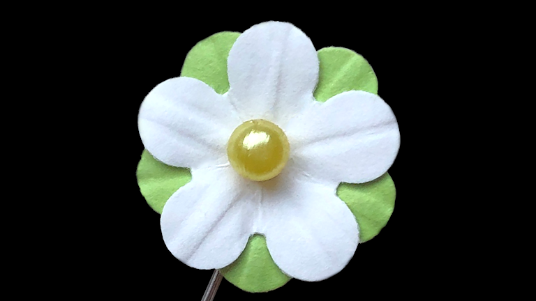 Majblomman är ljusgrön och vit med en gul mittpärla.