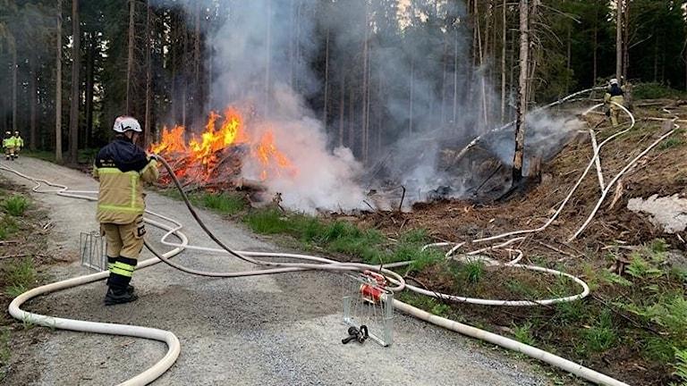 Brand i skogen mellan  Åryd och Hällaryd.