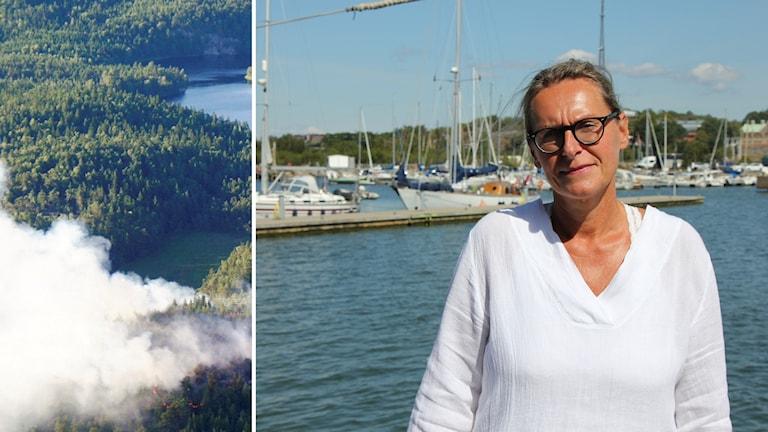 Skogsbrand, Malin Lind Mattsson.