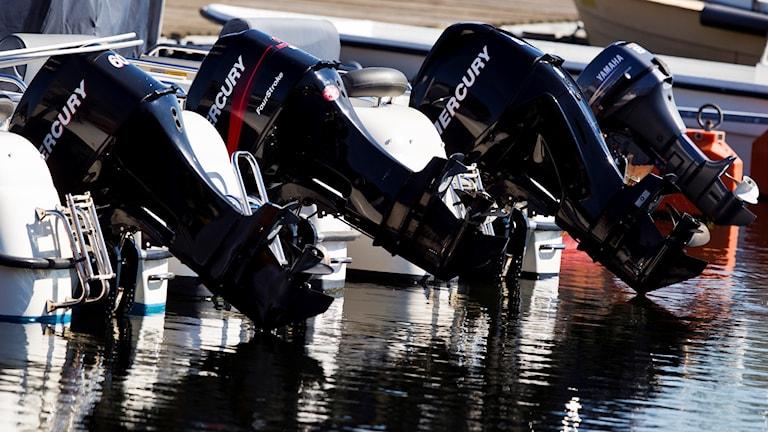 En bild på fyra båtmotorer som sitter fast på fyra båtar. Båtarna ligger brevid varandra i vattnet.