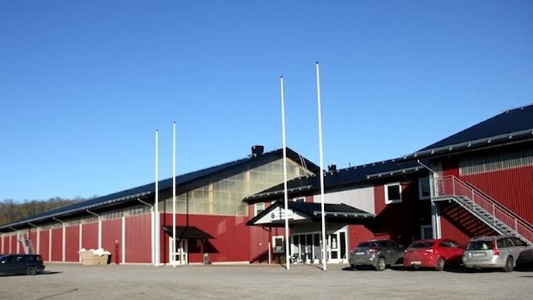 Ronneby Horse Center