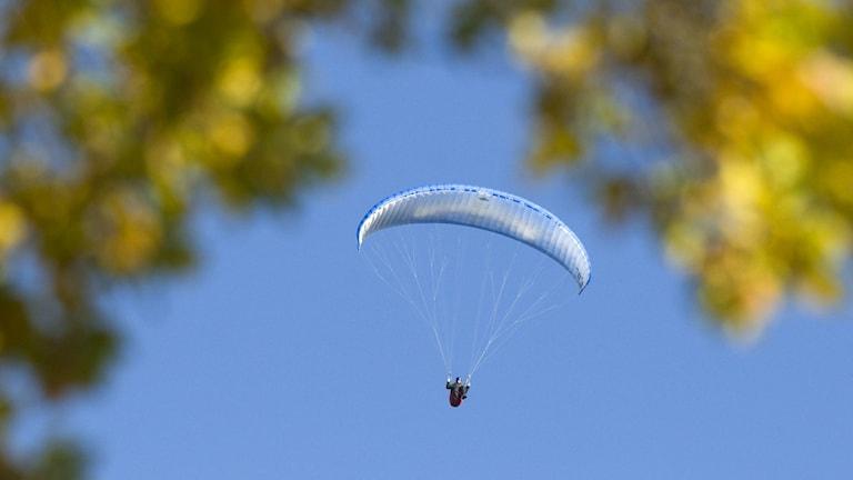 Skärmflygare fotad mot en ljusblå himmel.