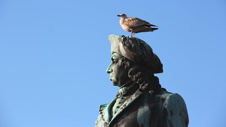 Staty av Carl XI med en trut på huvudet