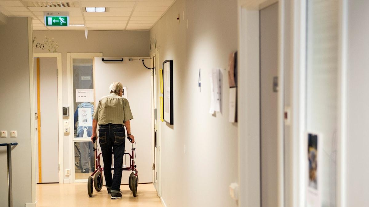 Äldre man med rullator går genom korridor på äldreboende