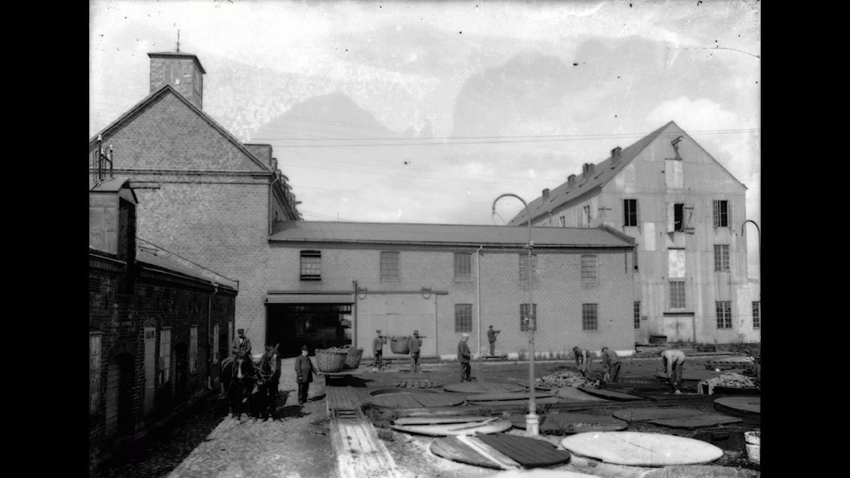 Lilljedalska läderfabriken i Sölvesborg omkring 1920.
