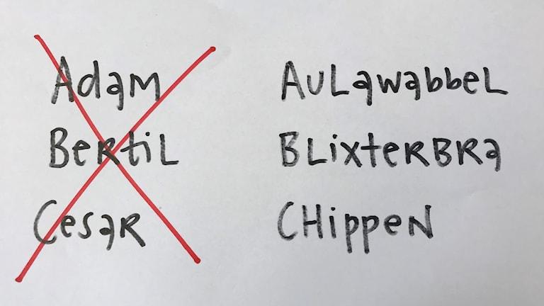 Gamla och nya ord för bokstavering.