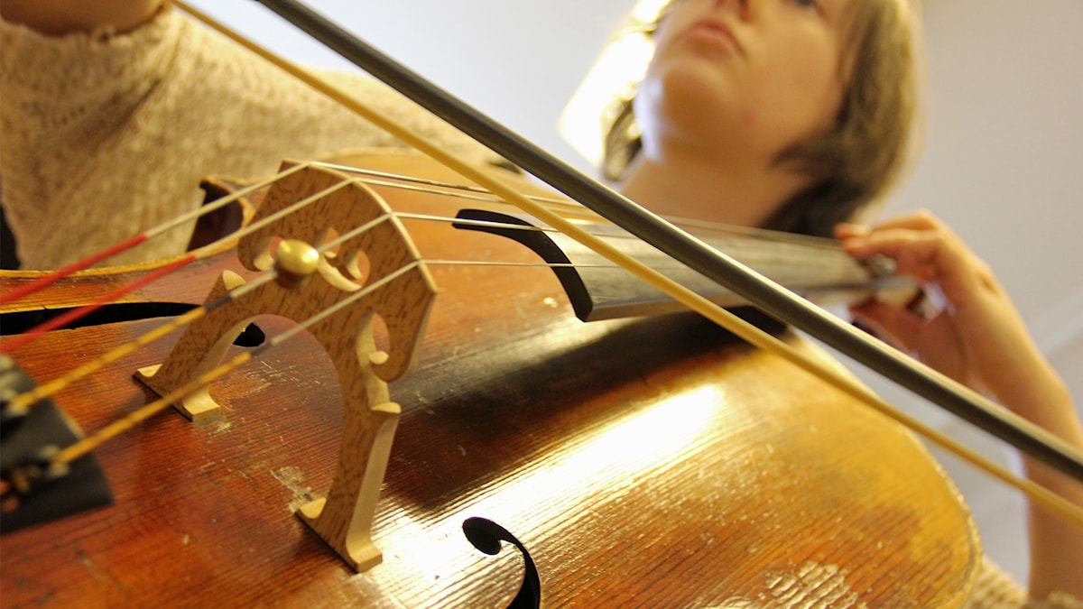Medlem i orkester spelar cello.