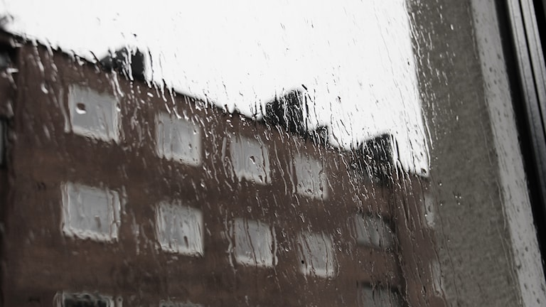 En regnig fönsterruta.