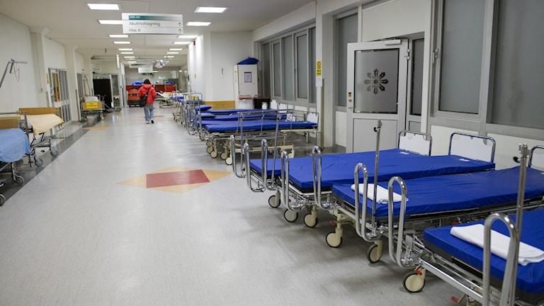 Folkhälsomyndigheten uppskattar att Blekinge kommer att behöva så mycket som 80 vårdplatser redan i mitten av maj på grund av patienter som blivit coronasmittade.