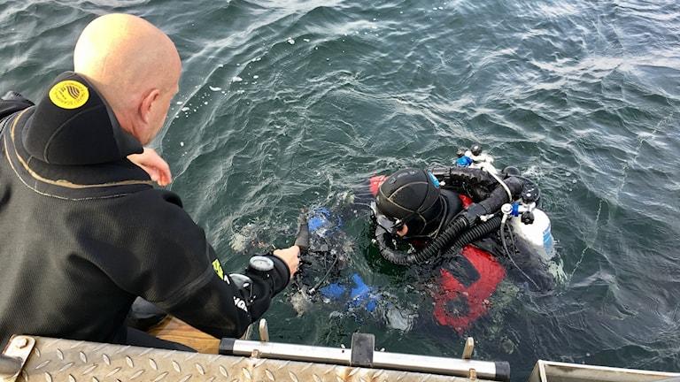 Fotografen Ingemar Lundgren på väg ner under ytan för att fota vraket.