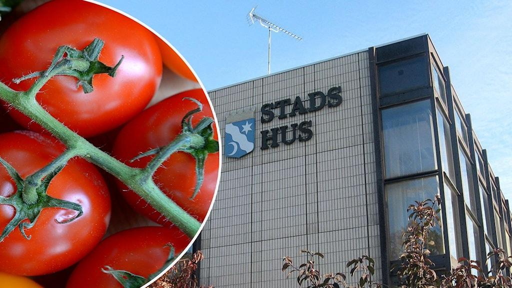 Ronneby stadshus och tomater