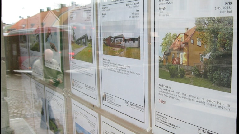 Bild på ett skyltfönster fyllt med bostadsannonnser. Foto:Jakob Rickardsson/SR.