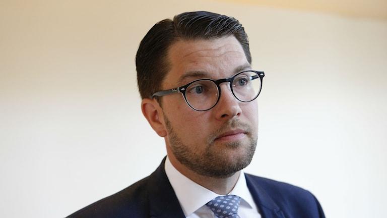 Porträttbild på Jimmie Åkesson som blickar ut ur bild.