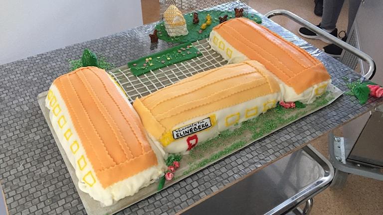 En stor tårta formad som en byggnad med små höns i marsipan utanför.
