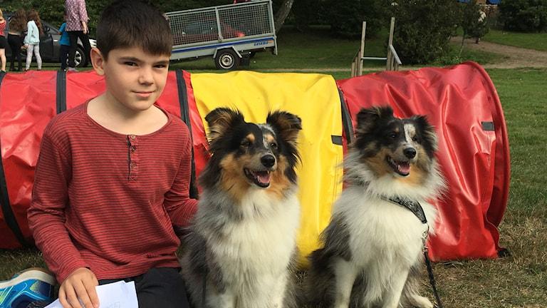 En pojke sitter bredvid två hundar.