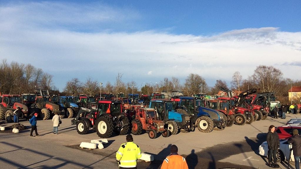 Massor med traktorer