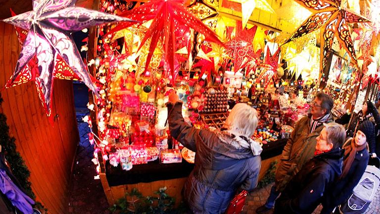En familj som står och tittar på julstjärnor vid ett marknadsstånd.