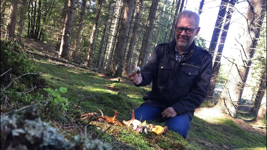 Åke sitter mitt ute i skogen med ett gäng svampar framför sig som han har plockat