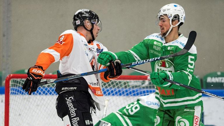 Det blev en jämn match mellan Karlskrona och Rögle - här Morten Madsen i kamp med Alen Bibic. Foto: Björn Lindgren/TT.