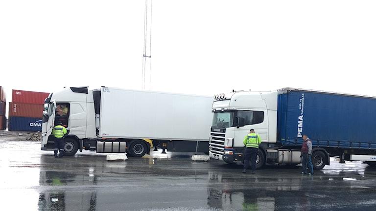 Flera lastbilar i hamnen i Karlshamn.