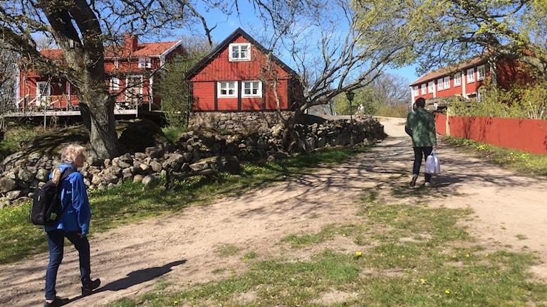 På Tjärö ska festivalen äga rum.