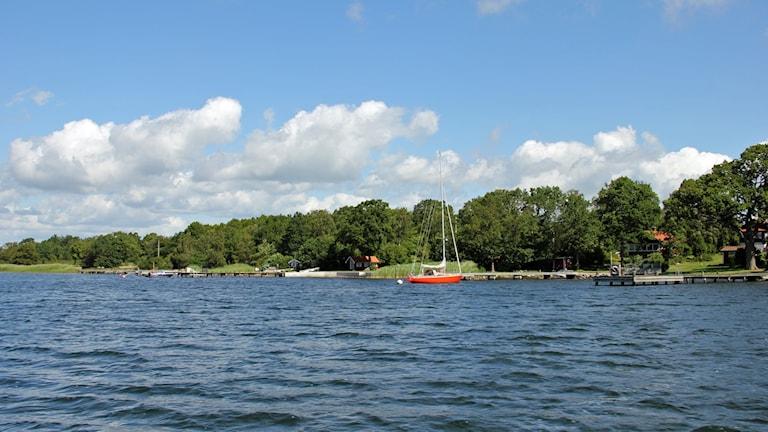 Skärgården med en segelbåt.