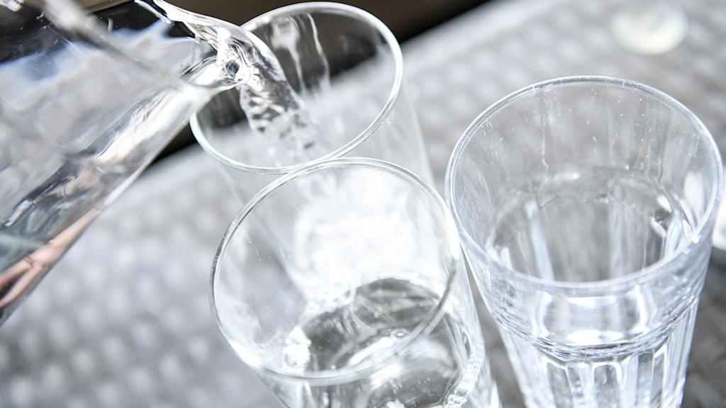Vatten från karaff hälls upp i glas