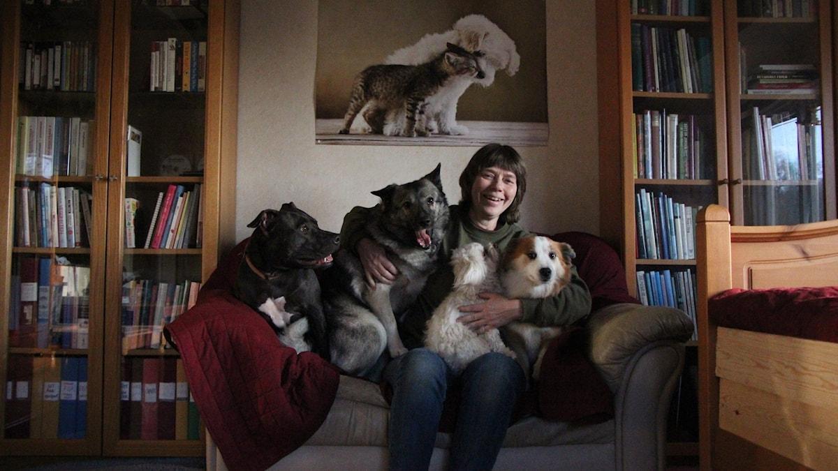 Kvinna sitter på soffa tillsammans med fyra hundar, över dom finns en plansch på en hund och en katt.