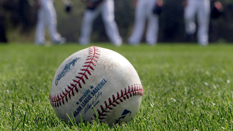 En baseball ligger på gräset.