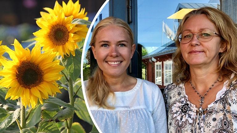 Sanna Olsson, miljöstrateg och Lottie Dahl Ryde, enhetschef för hållbar utveckling på bild, båda på Karlskrona kommun.