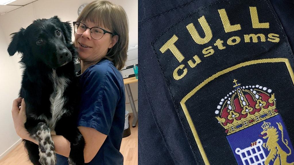 Veterinären Karin Råberg, med hunden Åke på AniCurakliniken i Nättraby, är orolig att man kommer behöva rabiesvaccinera personal i samband med ökad illegal import av hundar.
