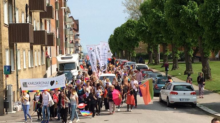 Föreningen Karlskrona Pride får året demokratipris.