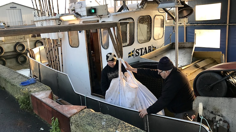 André Nilsson och Jan-Erik Berntsson lastar av sina säckar med spökgarn.