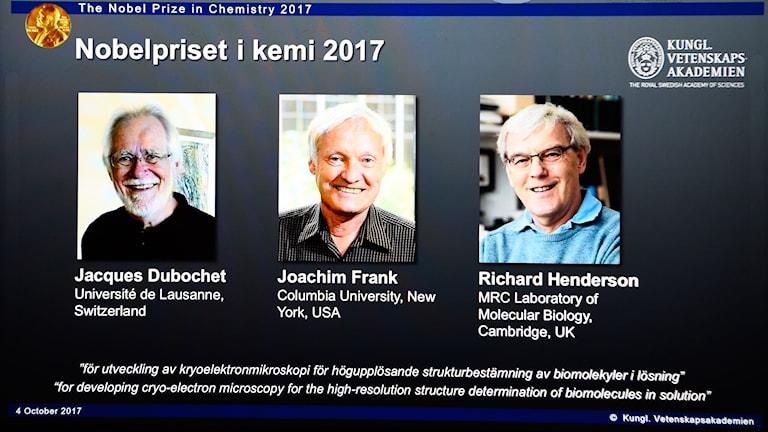 Året nobelpristagare i kemi.