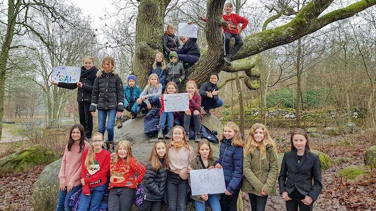Spandelstorpskolan 5A vi i femman viifemman 2020