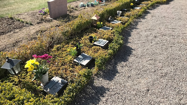 askgravplats Vämö kyrkogård Karlskrona