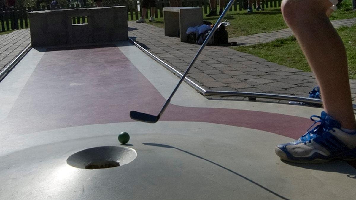 En bangolfare håller precis på att slå i bollen i koppen.