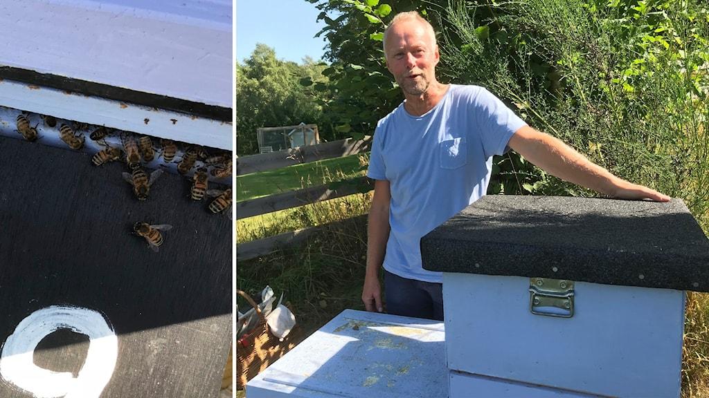 Joakim Stolt, ordförande för Bräkne Härads biodlarförening står och håller handen på taket till en bikupa.