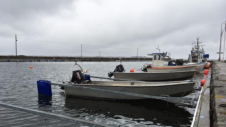 Flera båtar på rad i vattnet.