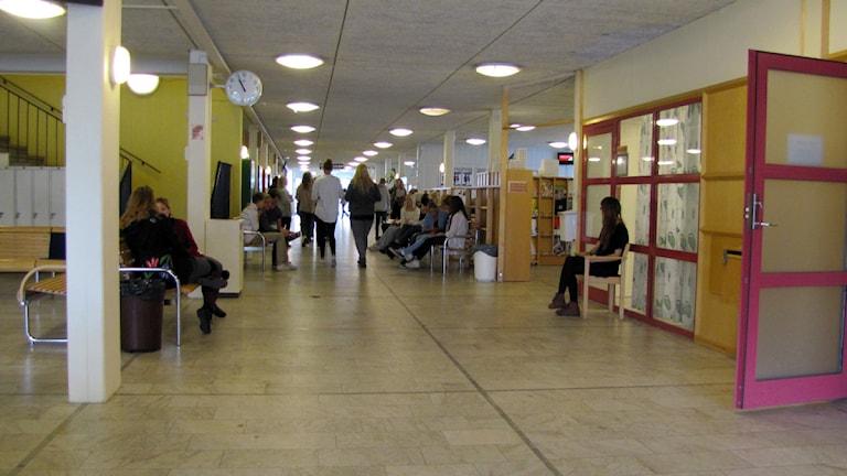 Elever i korridoren på Katedralskolan i Växjö.