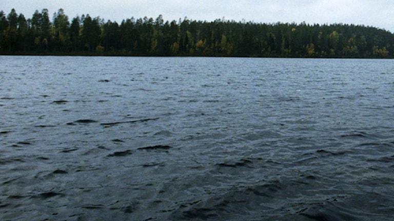 Sjön Åsnen.