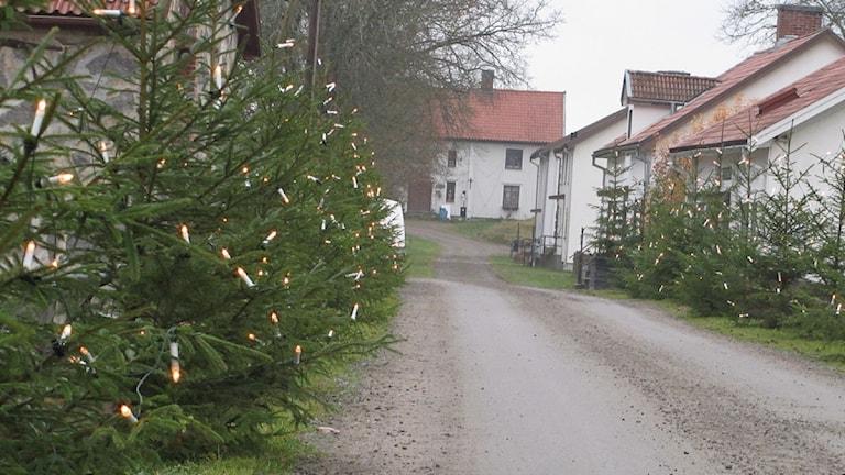 Julmarknad Huseby. Foto: Karin Ernstsson/Sveriges Radio