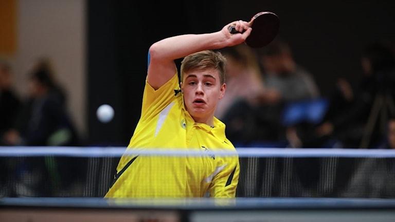 Truls Möregårdh, 2017 ITTF World Junior Championships