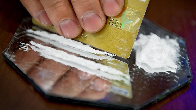 En man förbereder en lina med kokain med hjälp av ett kreditkort.