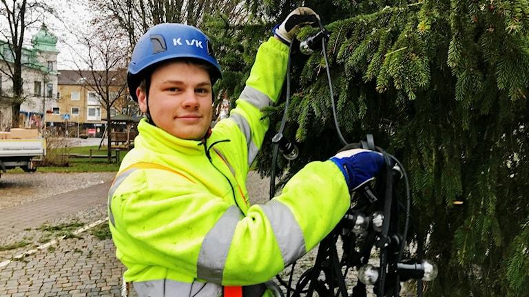 Erik Edmundsson klär den nya granen på stortorget i Älmhult.
