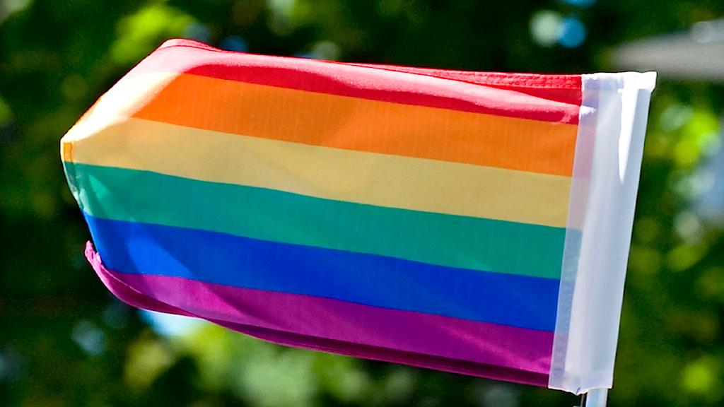 Regnbågsflagga. Foto: Claudio Bresciani /  Scanpix