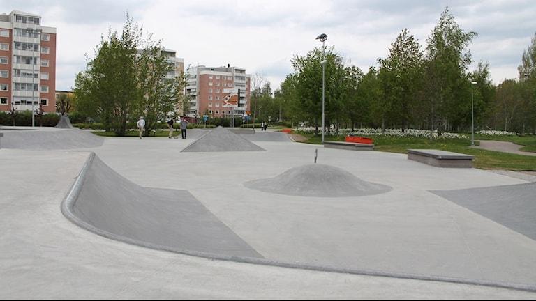 Skateparken på Spetsamossen i Växjö. Foto: Malin Ulfhager/ Sveriges Radio
